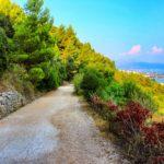 dirt-road-1272632__340